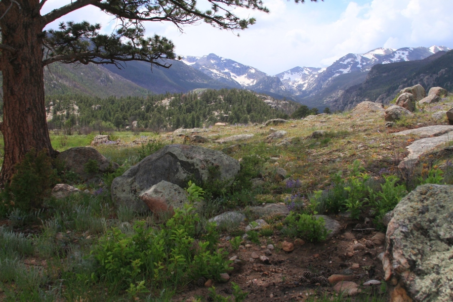 good-place-married-rocky-mountain-national-=park