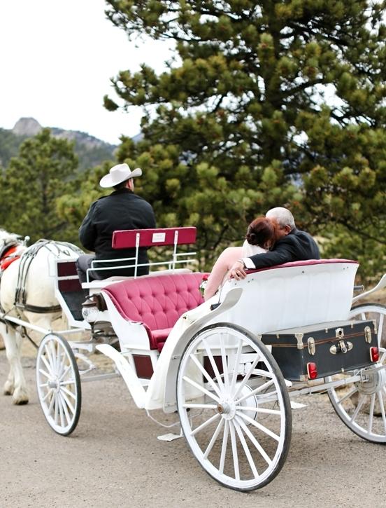 horse-drawn-carriage-estes-park