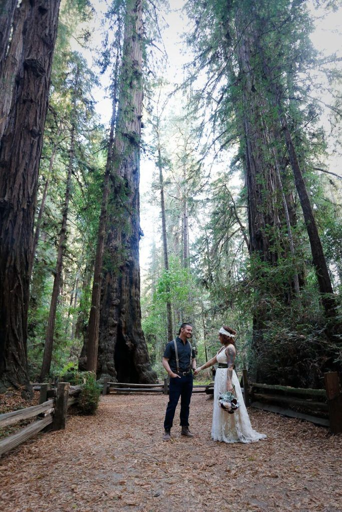 santa cruz wedding redwoods