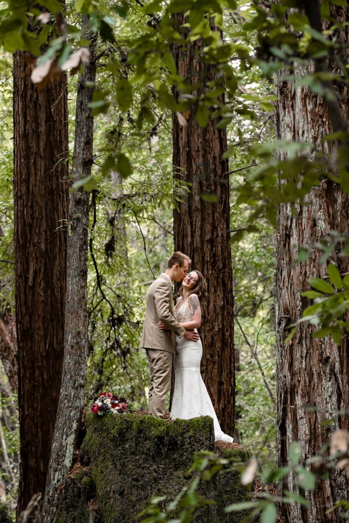 Places to elope in the Santa Cruz redwoods