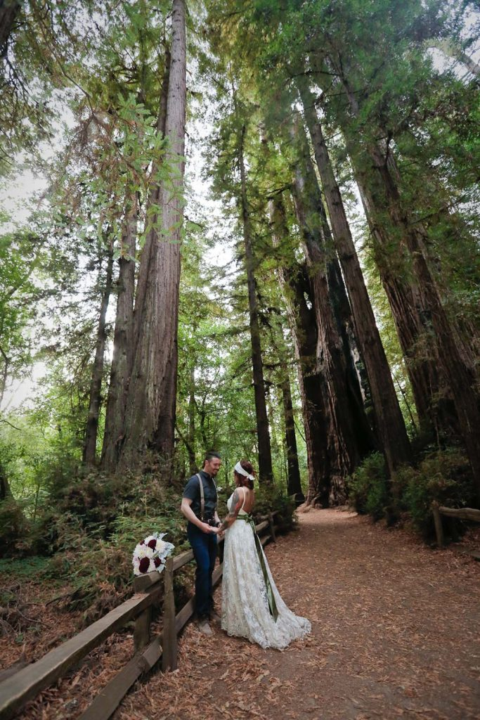 California redwood elopement