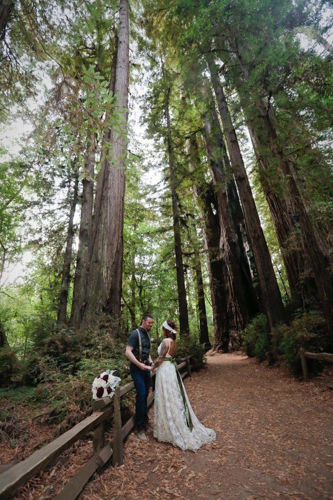 California redwood elopement