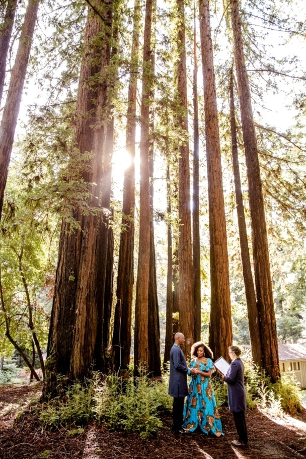 ceremony in the redwoods