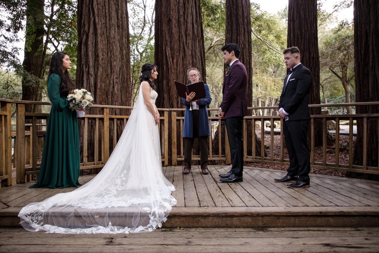 California redwood wedding ceremony