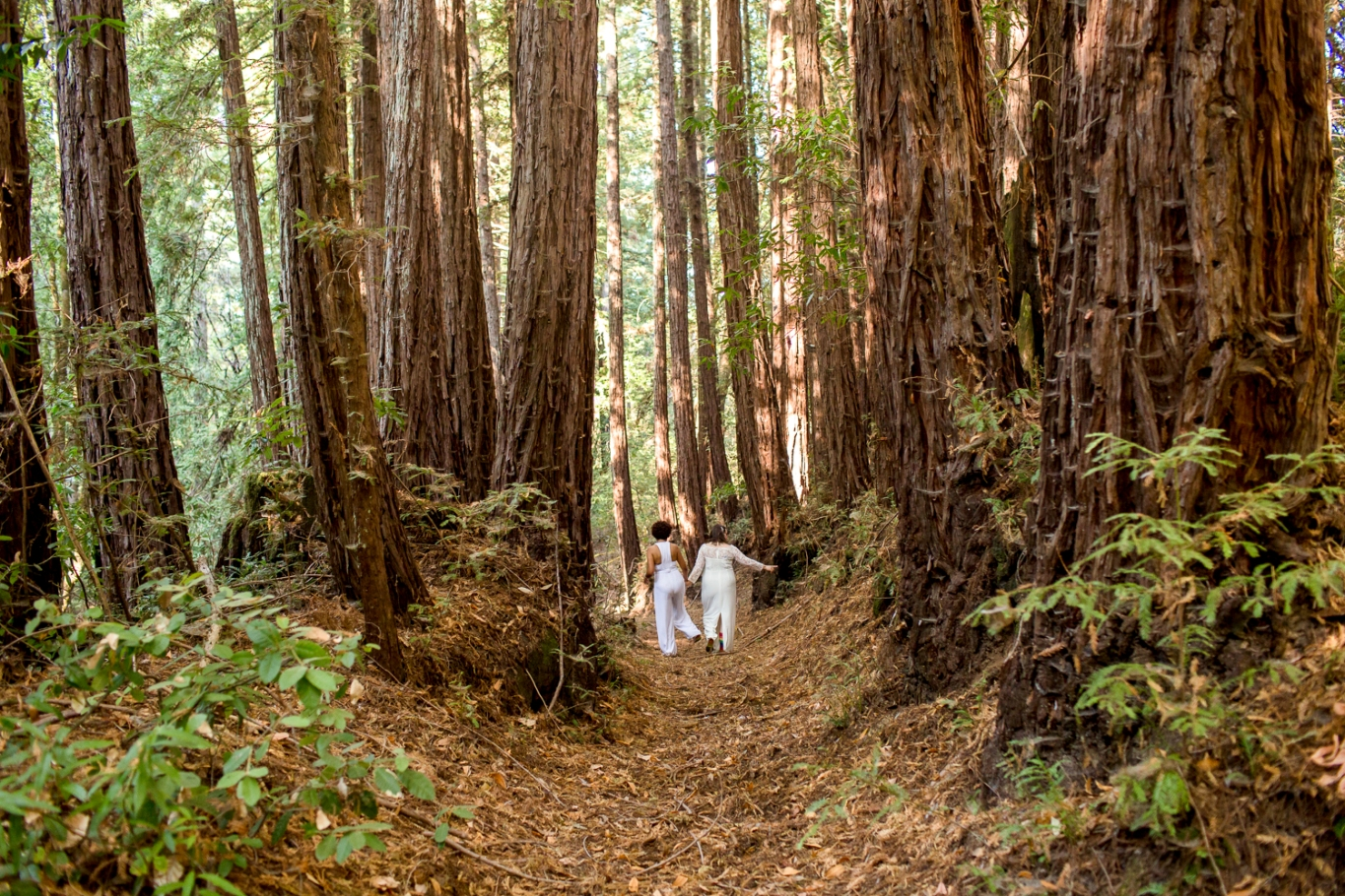 Hally and Maijia amid the redwoods