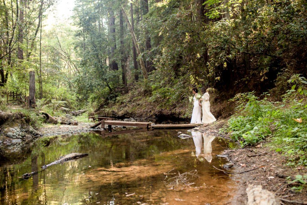 alongside the creek