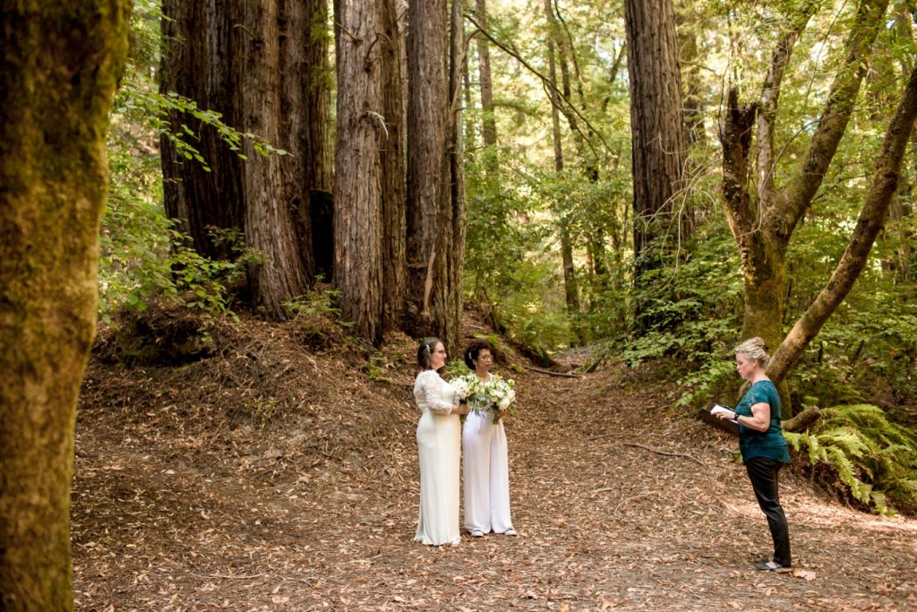 same-sex wedding ceremony in the redwoods