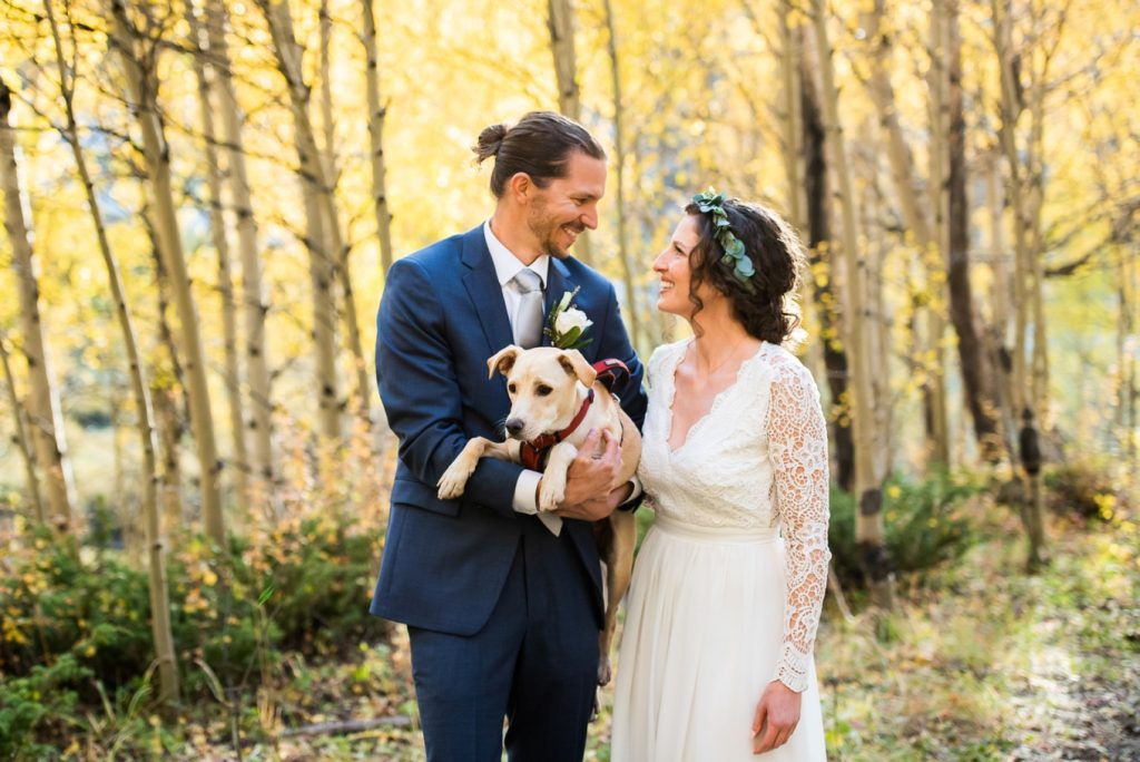 Dog at the wedding