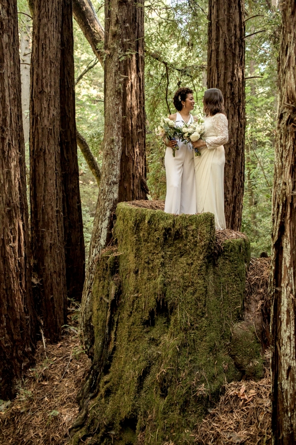 Two brides standing on a redwood tree stump